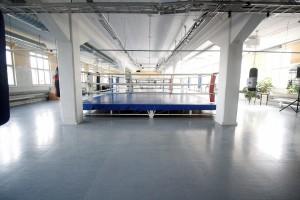 WISA-areena (Large)